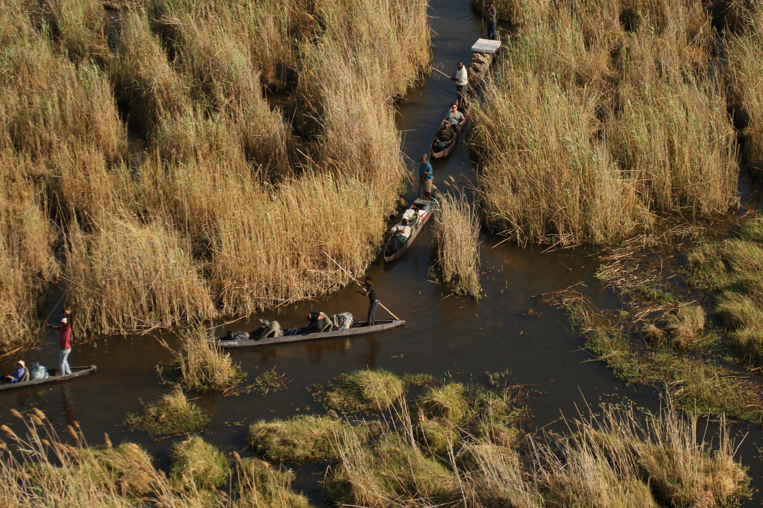 Mokoro through the Delta