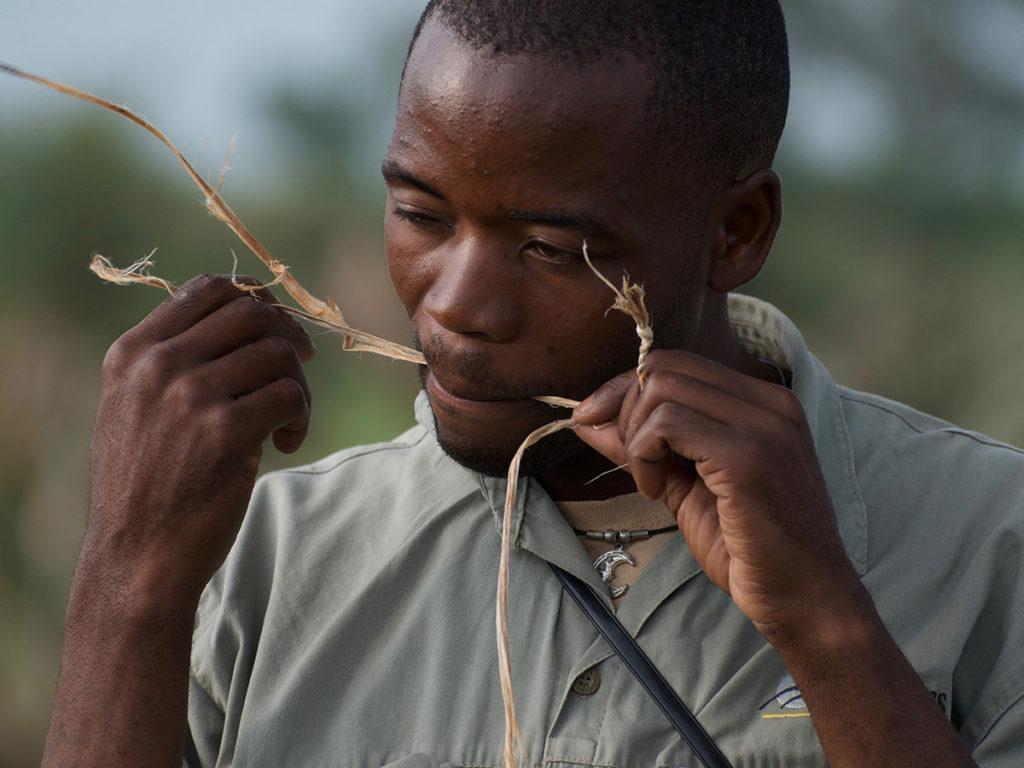 Research Talks by The Wild Bird Trust