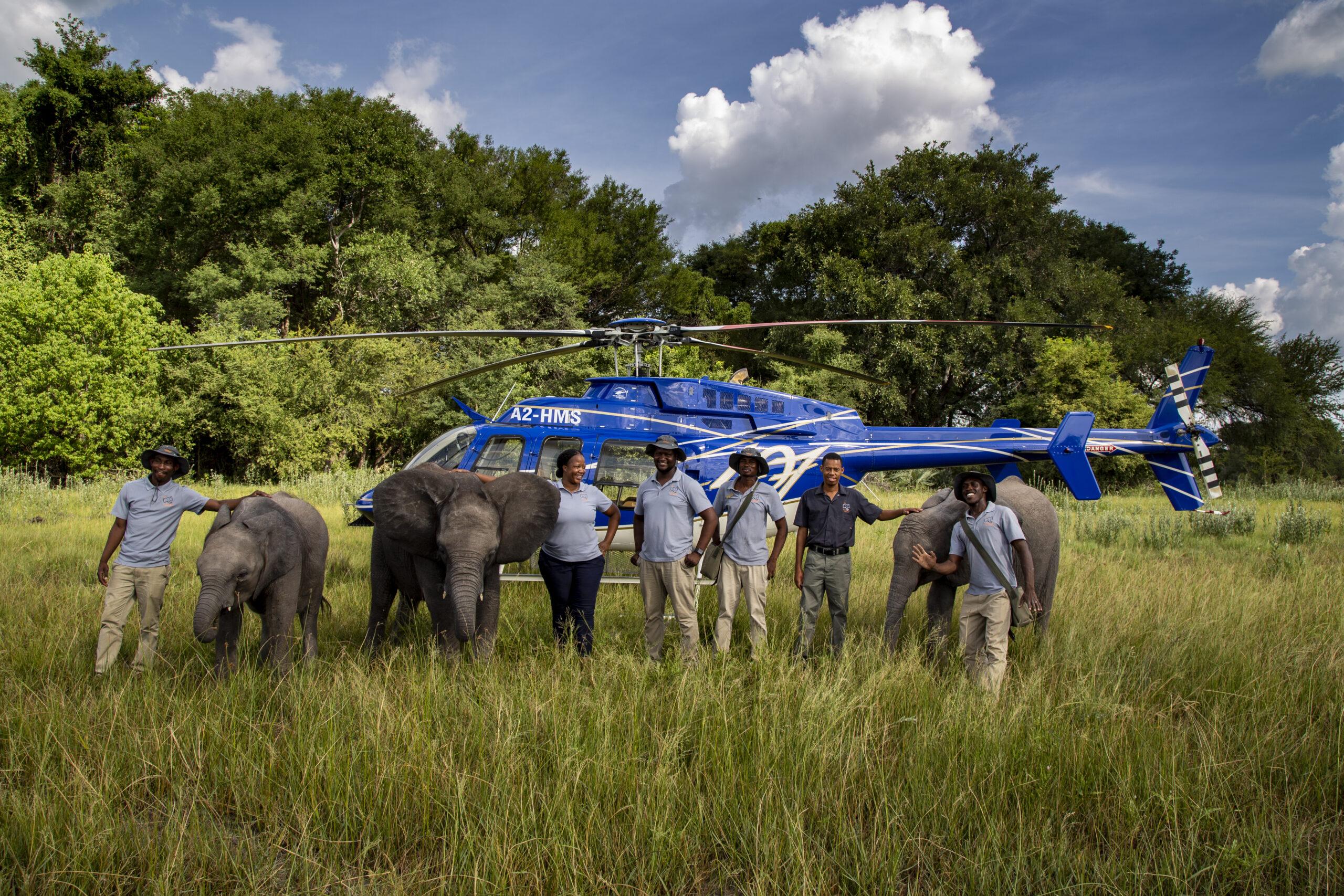 Elephant Heaven Experience