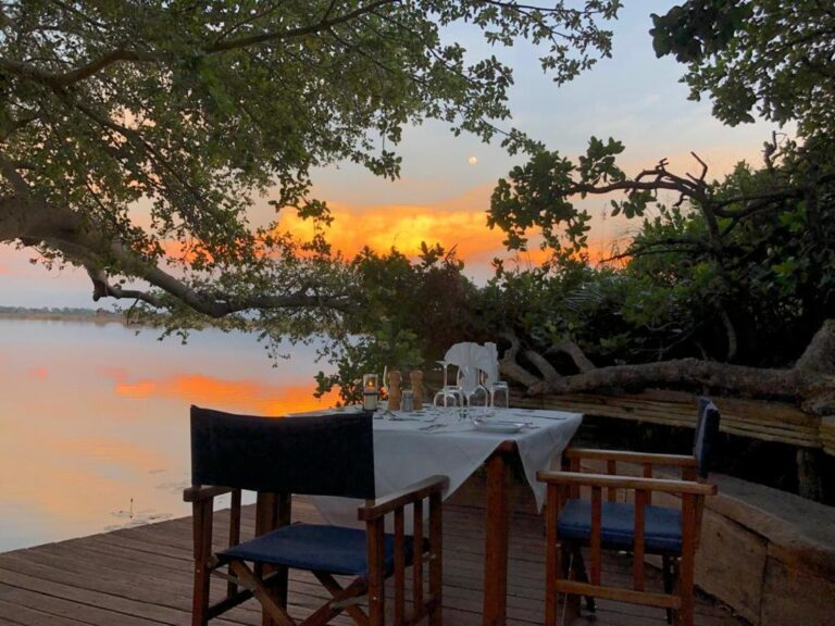 Sundowners with roots and journeys